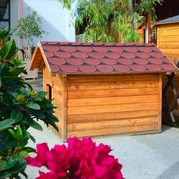 Σπίτι Σκύλου 90 x 120cm